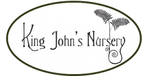 king-jons-nursery-logo